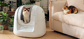 Automatic Cat Litter Box.
