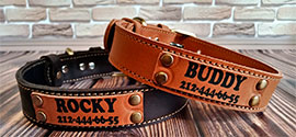 Personalized Dog Collars.