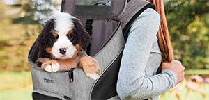 Dog Backpacks.