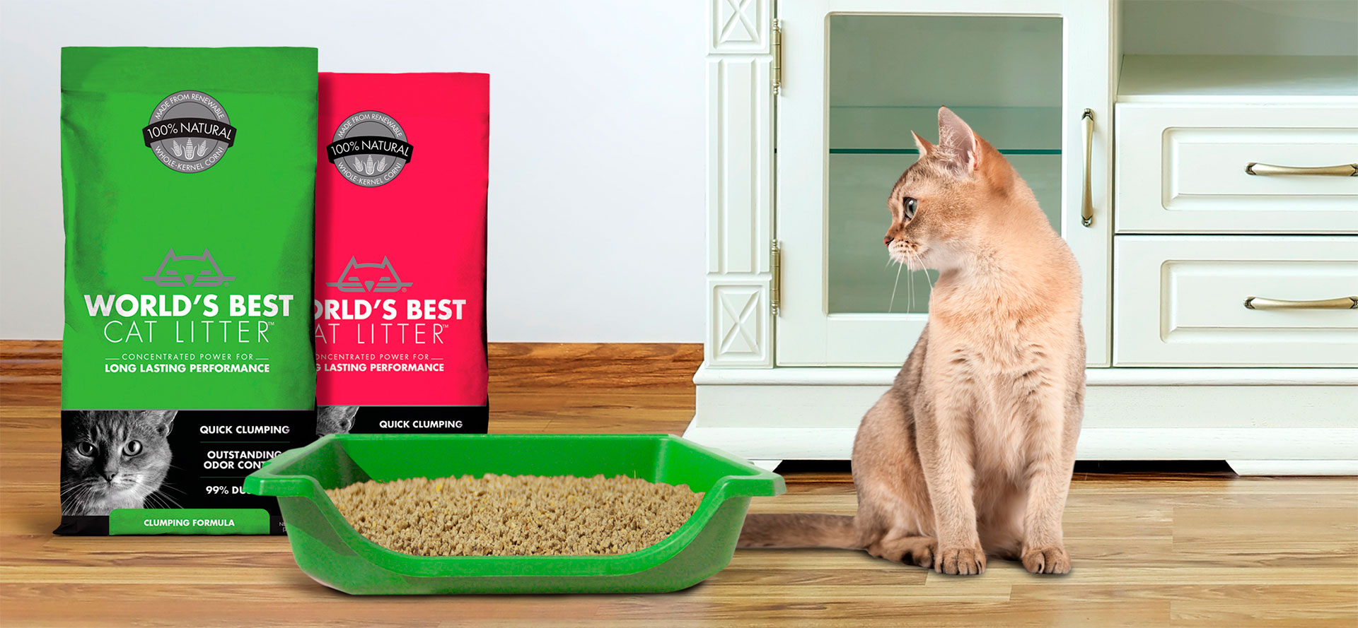 Odor Less Litter for Cat.