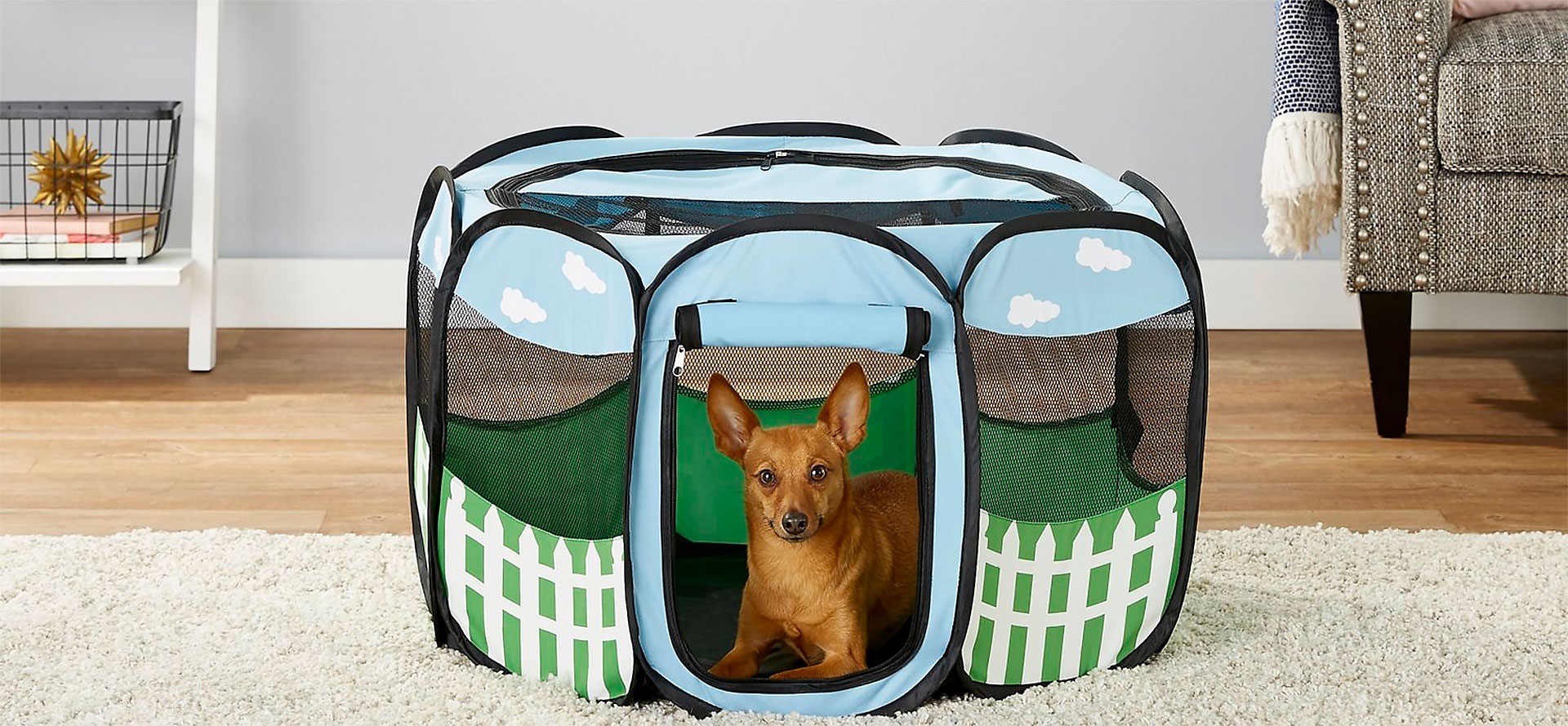 Playpens for Small Dog.